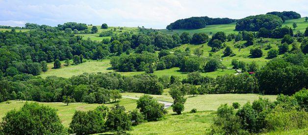 Le massif du Jura, pays d'eau et de bois