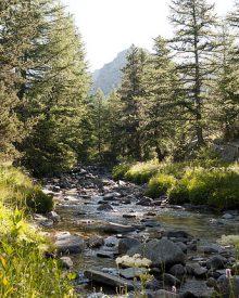 Le parc du Mercantour, des monts et merveilles